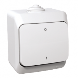 WDE000520 Schneider Cedar Plus 2P Switch IP44 white